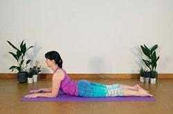 yoga poses  hatha  vinyasa  pranayama  meditation